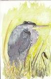 heron 14