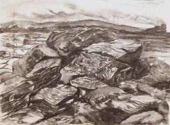 Tyninghame rocks