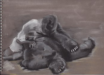 the soldier bear