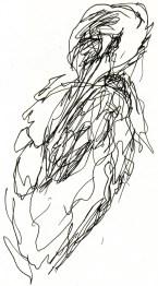 herons 20 (12)