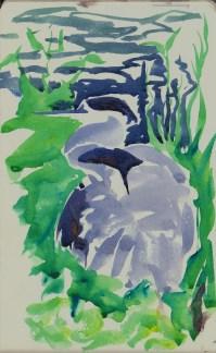 herons 20 (3)