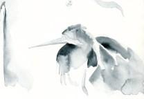 herons 20 (8)