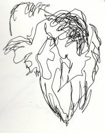 herons 20 (9)