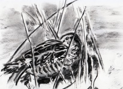 Snipe - charcoal