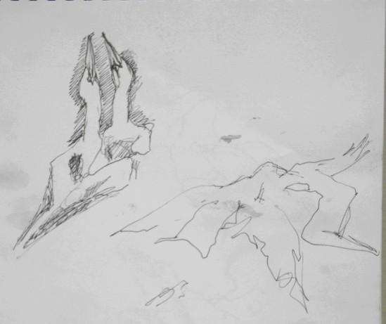 20130618 Bass Rock gannets 3