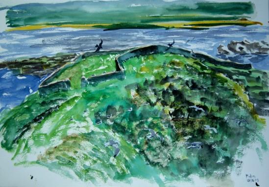 Field sketch - Fidra