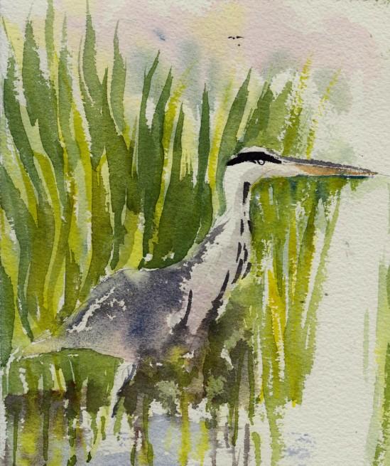201307 01 heron
