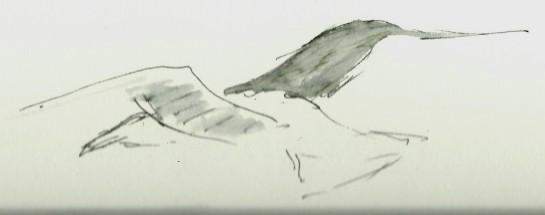 20140221 (4)