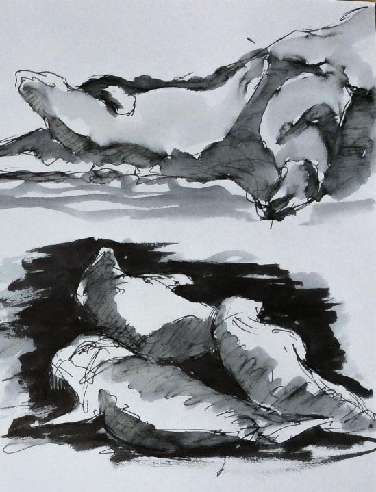2014-07-17 Seals at Holy Island (4a)