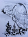 20140921 juvenile herons (3)