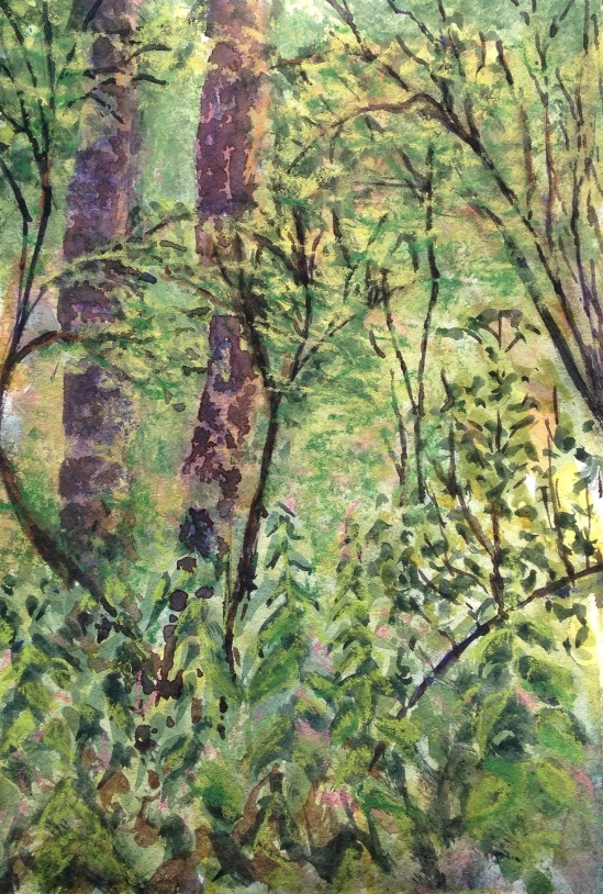 2015-08-08 Siden Hill Woods watercolour conte crayon (4)