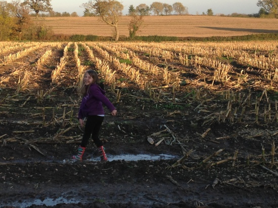 2015-10-31 puddles in autumn